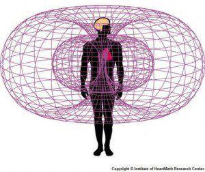 human torus